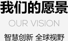 我们的愿景 Our vision 智慧创新 全球视野